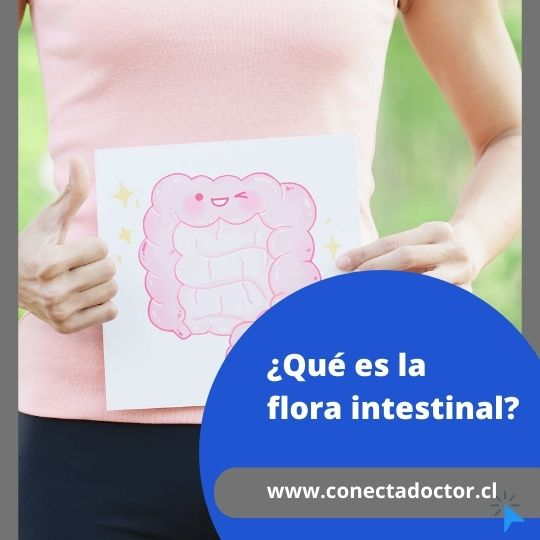 ¿Qué es la flora intestinal?